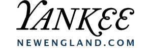 New England Today Logo