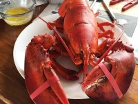 boiled lobster as