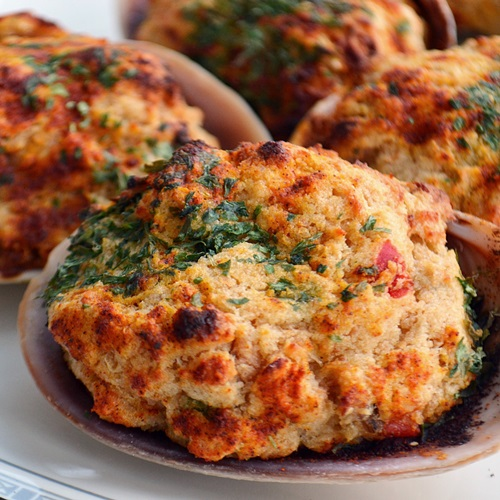 Stuffed clams new england today stuffed clams sciox Gallery