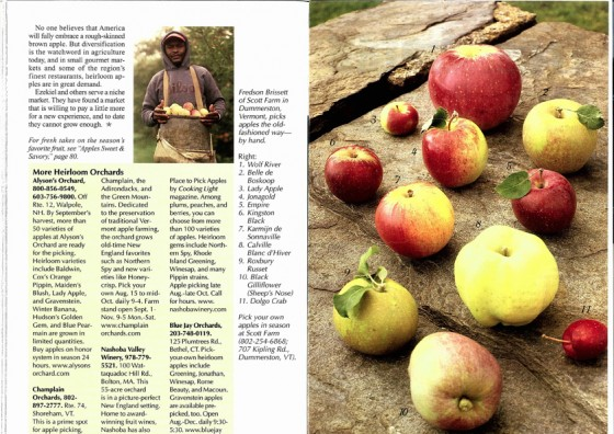 Apple Orchard Spread 3