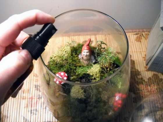 Make A Miniature Terrarium