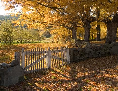 Slide Show Country Roads In New England