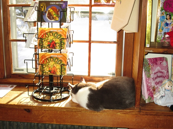 Rosemary the cat enjoys a sunny window at Pickity Place in Mason, NH.