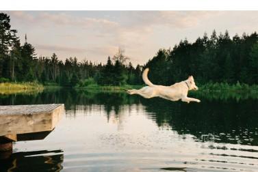 Vermont Life | Photographs