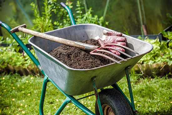 The difference between soil and dirt gardening advice for Soil vs dirt