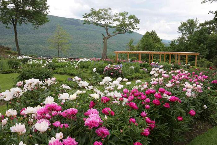 Superieur Best Gardens In New England