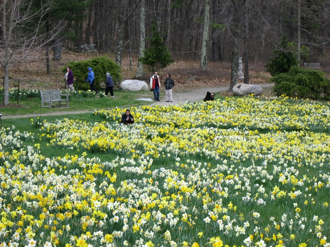 Tower Hill Botanic Garden | A Colorful Showplace in Central ...