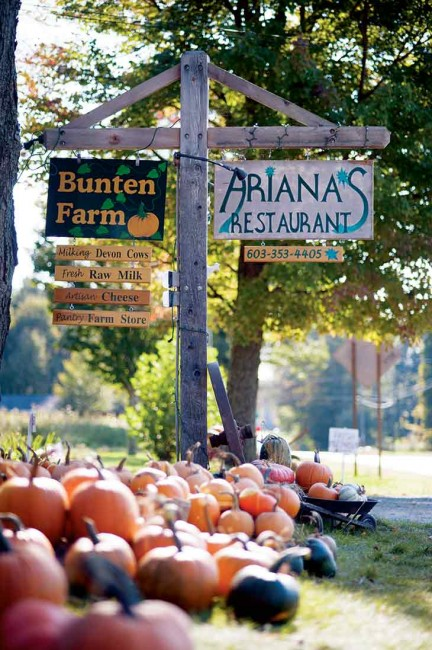 "In Orford, New Hampshire, fine-dining establishment Ariana's leases a portion of the Bunten Farm, a heritage Devon-breed dairy operation. The conserved 193-acre property also includes a farm store, the ""Pumpkin Plaza,"" and managed woodland."