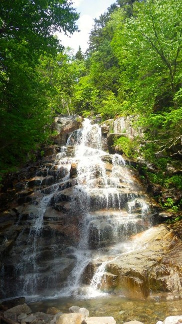 Cloudland Falls, an 80-foot cascade, is 1.4 miles away from the parking lot and offers a great place to relax and cool off after a long day of hiking.