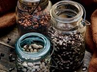 Bumblebee, Appaloosa, and Peregion  Beans.