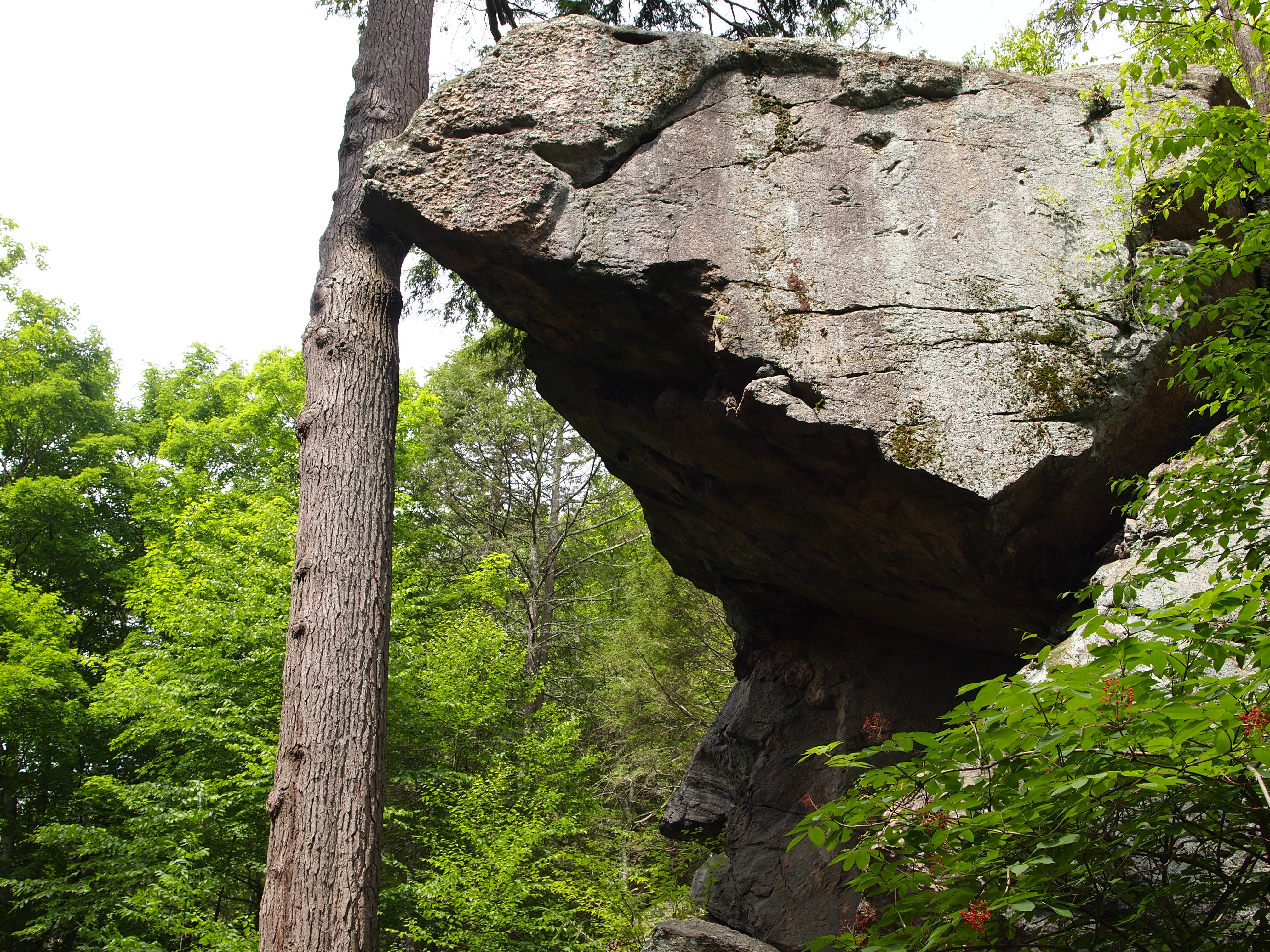 The Legend of Purgatory Chasm