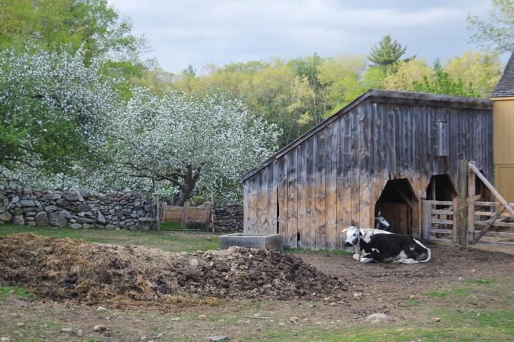 Old Sturbridge Village   Finding 1830s New England in 21st ...