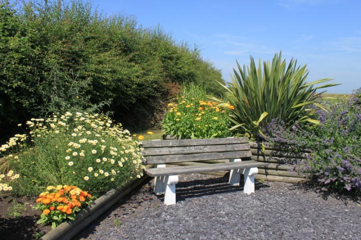 Plant a Sensory Garden - New England Today