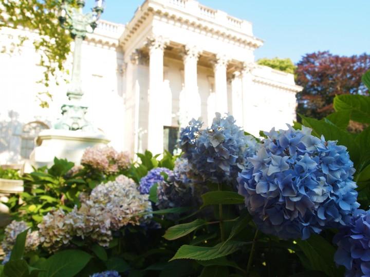 Belli fiori adornano il sentiero per Marblehouse