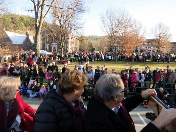 wassail parade woodstock green