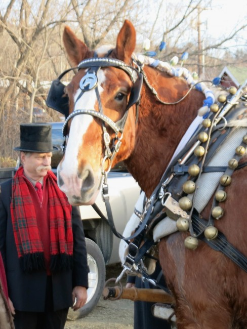 wassail parade woodstock horse