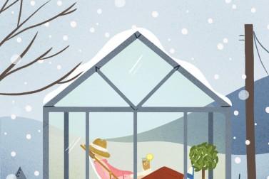Winter Dreams   Mary's Farm