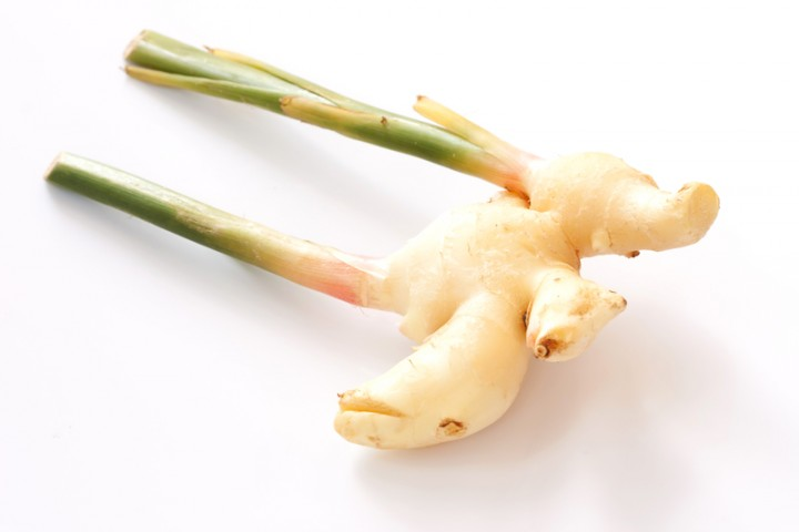 how to grow ginger i