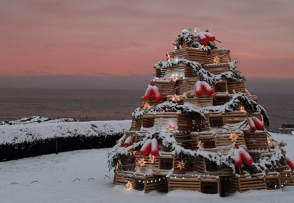 New England Lobster Trap Christmas Trees | Where to Find Them