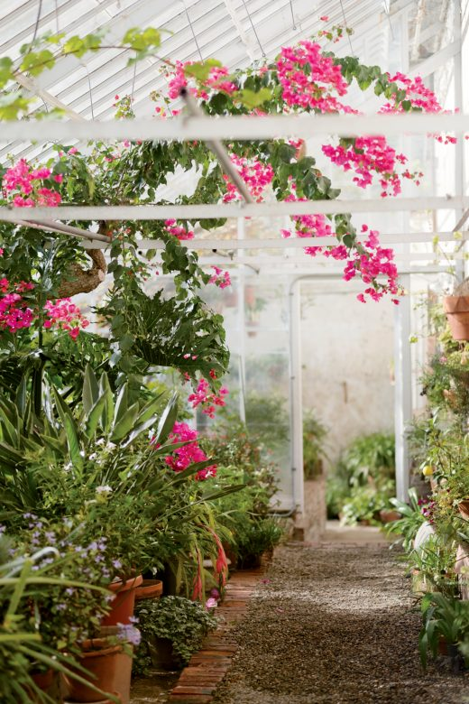 5 BEST INDOOR GARDEN ESCAPES IN NEW ENGLAND