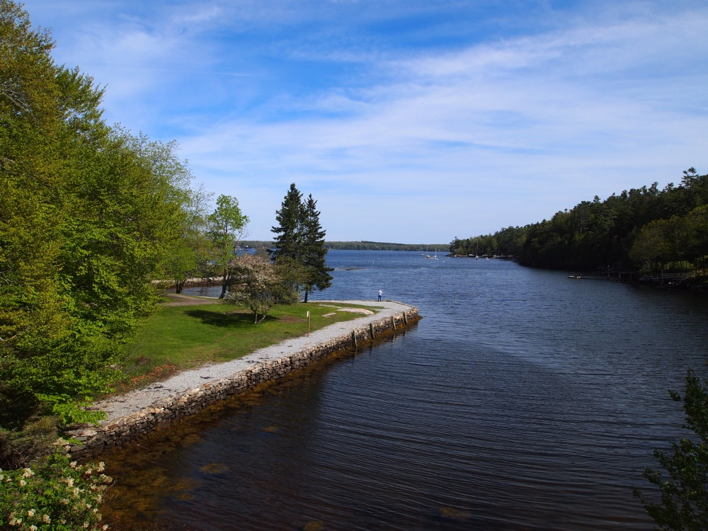 Barret Park is one of several nearby parks and nature reserves, perfect for short hikes or walks by the water.