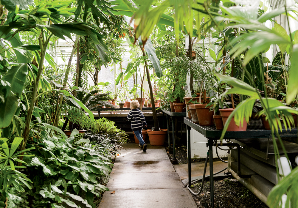 A young visitor lets off some steam in the Palm House--aka
