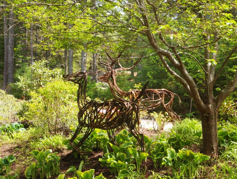 A Visit to the Coastal Maine Botanical Gardens - New England Today