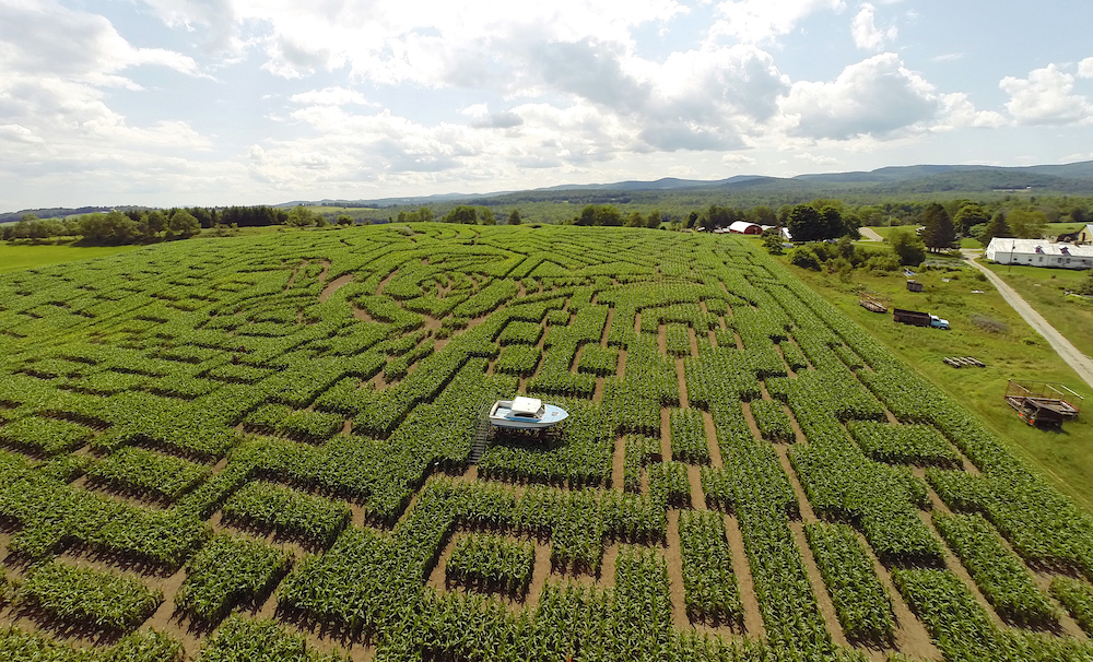Best Corn Maze in Every New England State