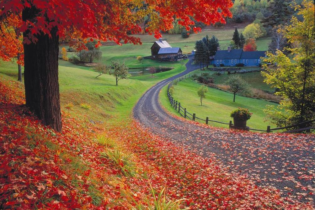 https://newengland.com/wp-content/uploads/Fall-foliage-Vermont-Large.jpg