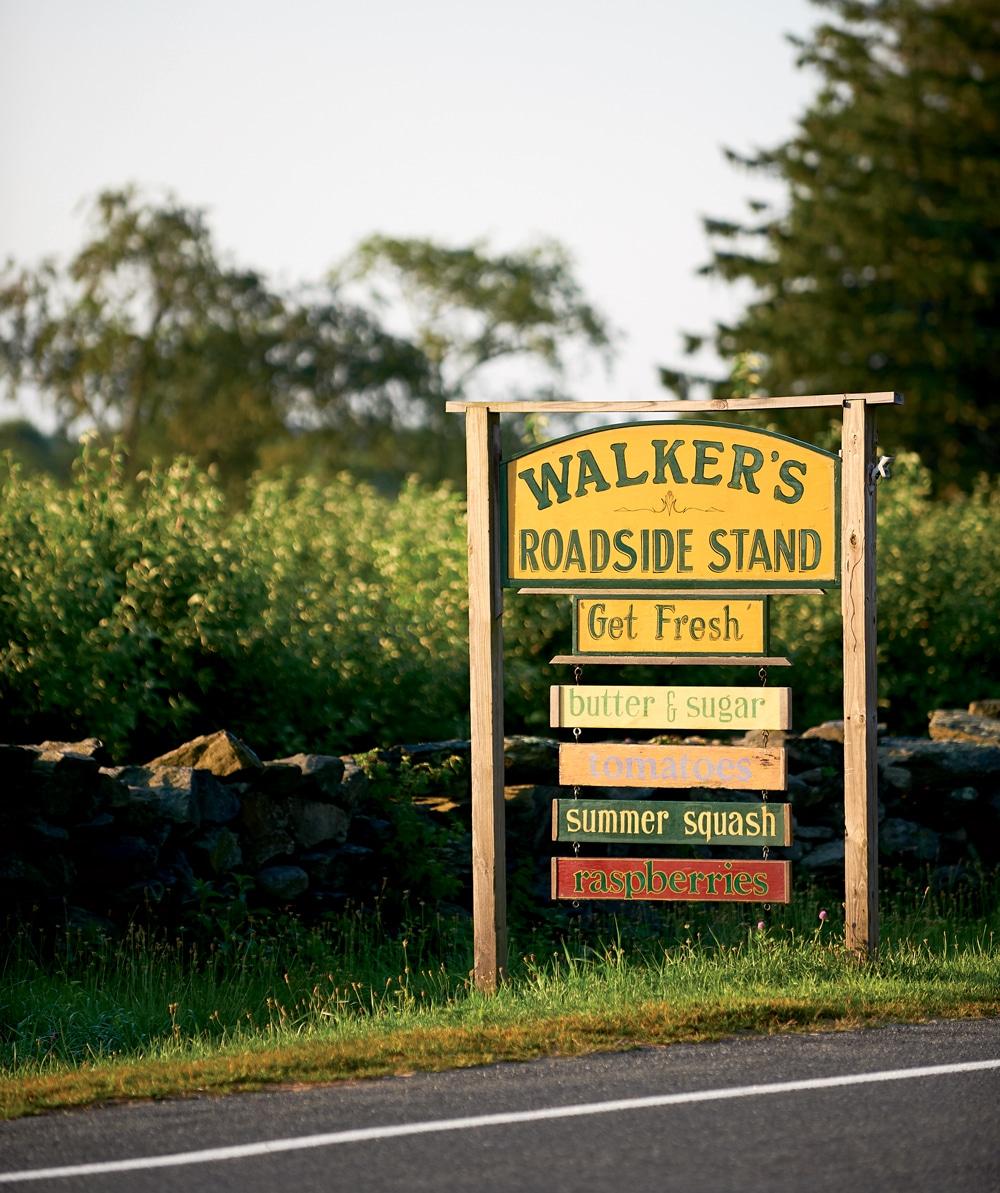 A Hidden Beauty, Visiting the Farm Coast of Massachusetts and Rhode Island