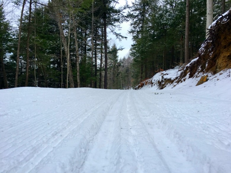 Tracks are great for classic cross-country skiing.
