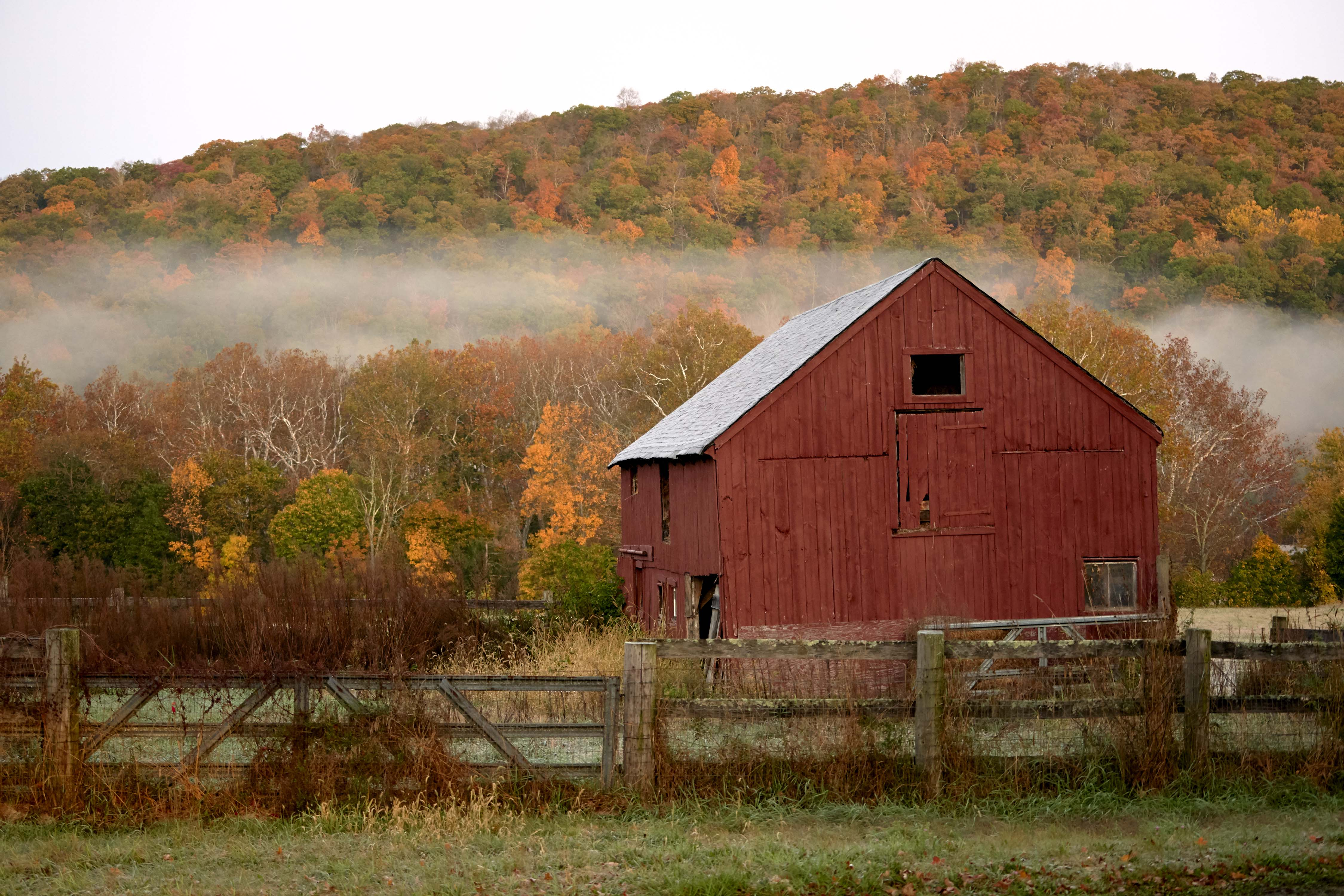 Red Barn during Fall in Kent