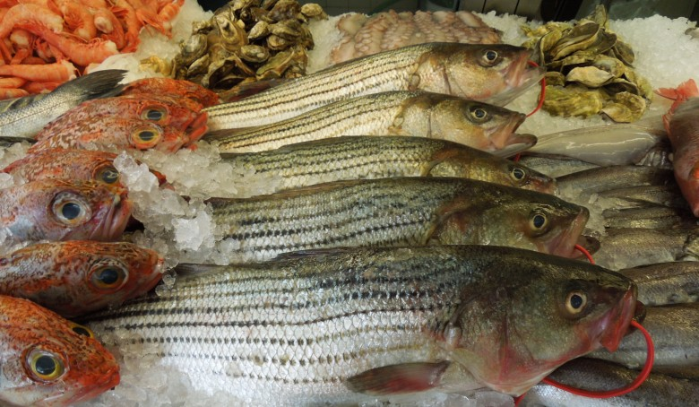 10 Best New England Seafood Markets - New England Today
