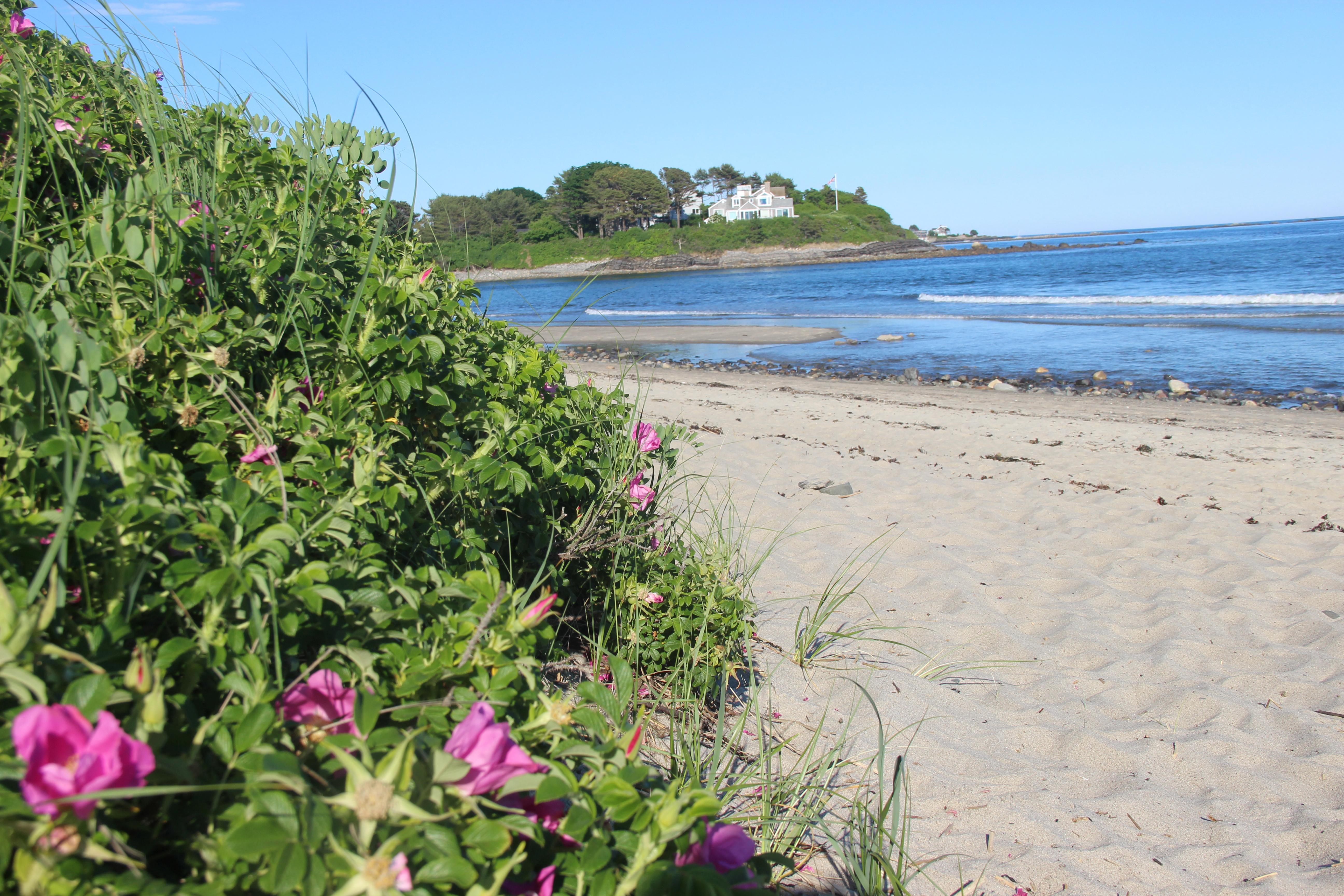 The 5 Best Hidden Beaches In New England