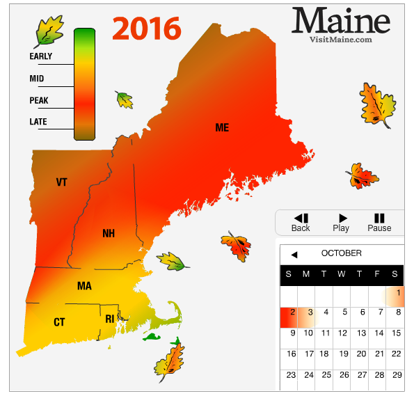New England Fall Foliage Forecast New England Today - Us fall color map