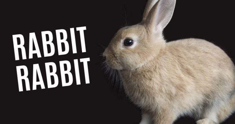 Why People Say Rabbit Rabbit On The First Day Of The Month