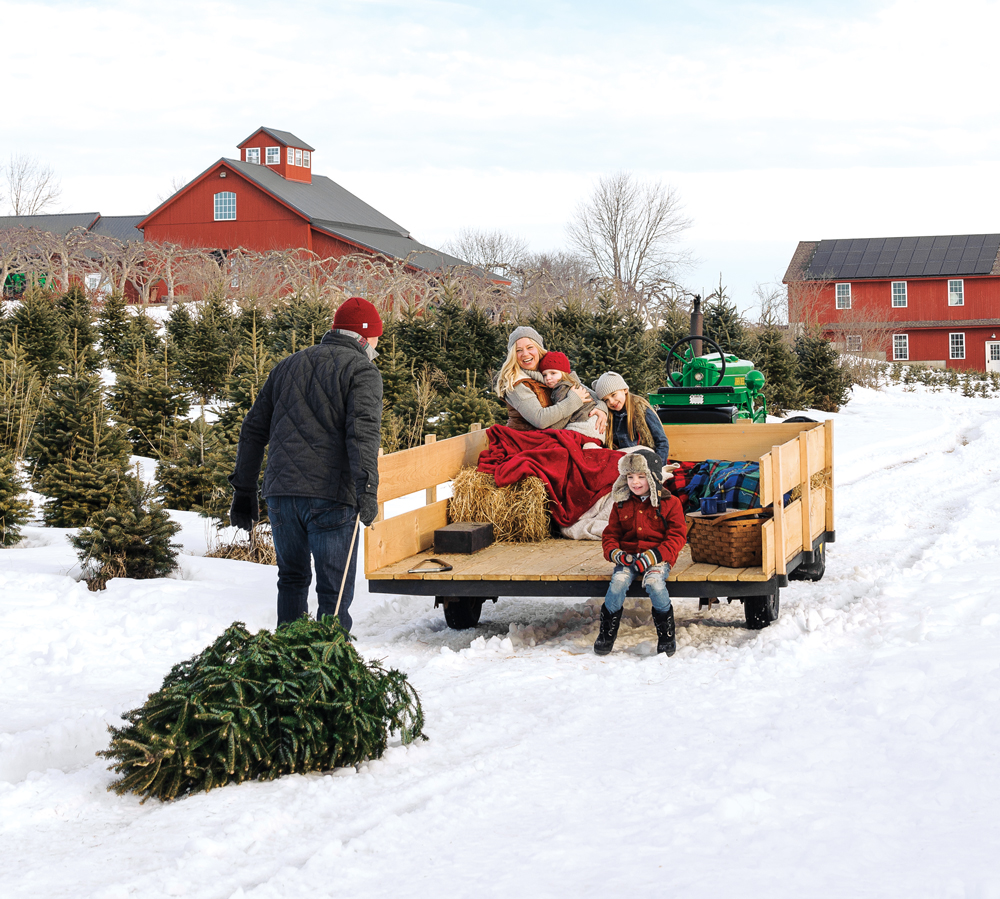 loading up a freshly cut tree at allen hill farm in brooklyn connecticut a - Best Christmas Tree Type