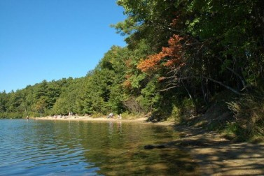 Walden Pond State Reservation