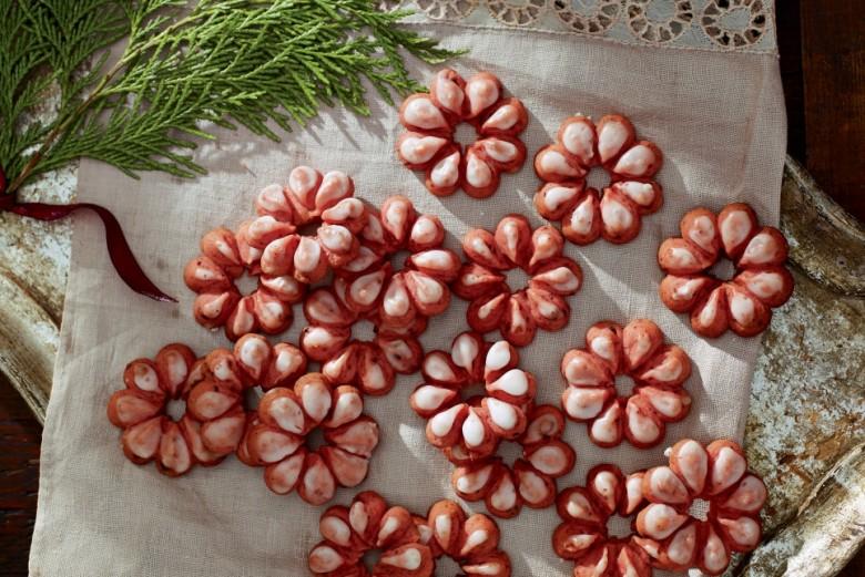 Iced-Cranberry Spritz Cookies Recipe