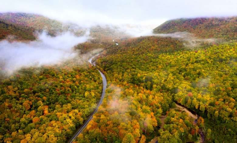 New Hampshire Fall Colors Best Time 2021 New Hampshire Fall Foliage Guide   New England Today