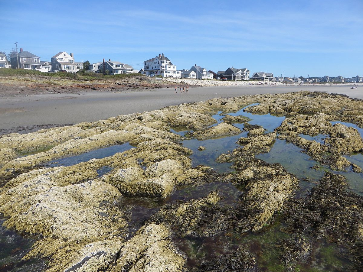 Things To Do In Scarborough Maine Coastal Weekend