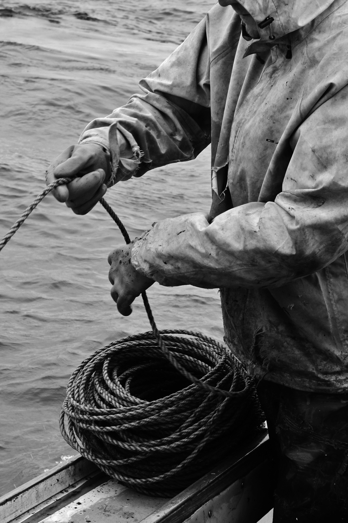 Coiling the Warps Stevie Ames coils rope. As a member of a multi- generational fishing family, coiling warps was probably one of the first things he learned as a child.