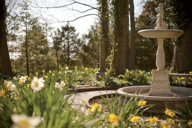 The best spring festivals and flower spots in new england chasing spring new england today for Blithewold mansion gardens arboretum