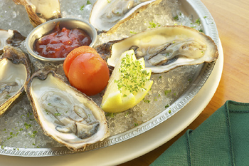 Oyster Guide