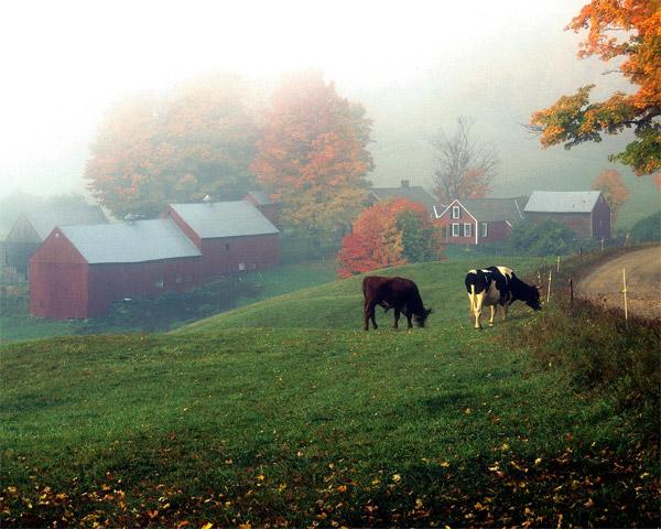 Encyclopedia Of Fall J Is For Jenne Farm