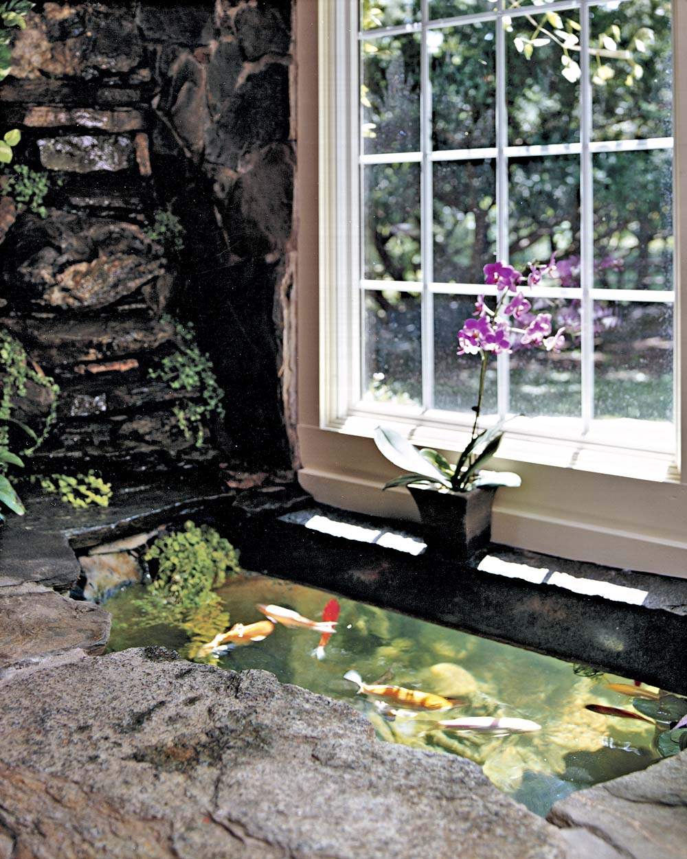Do it yourself indoor outdoor koi pond for Indoor fish pond ideas