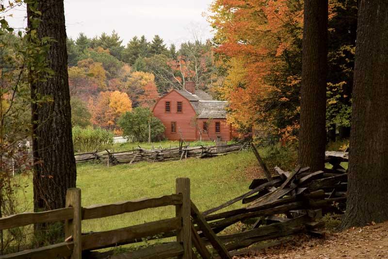 Fall Foliage Photo Tips