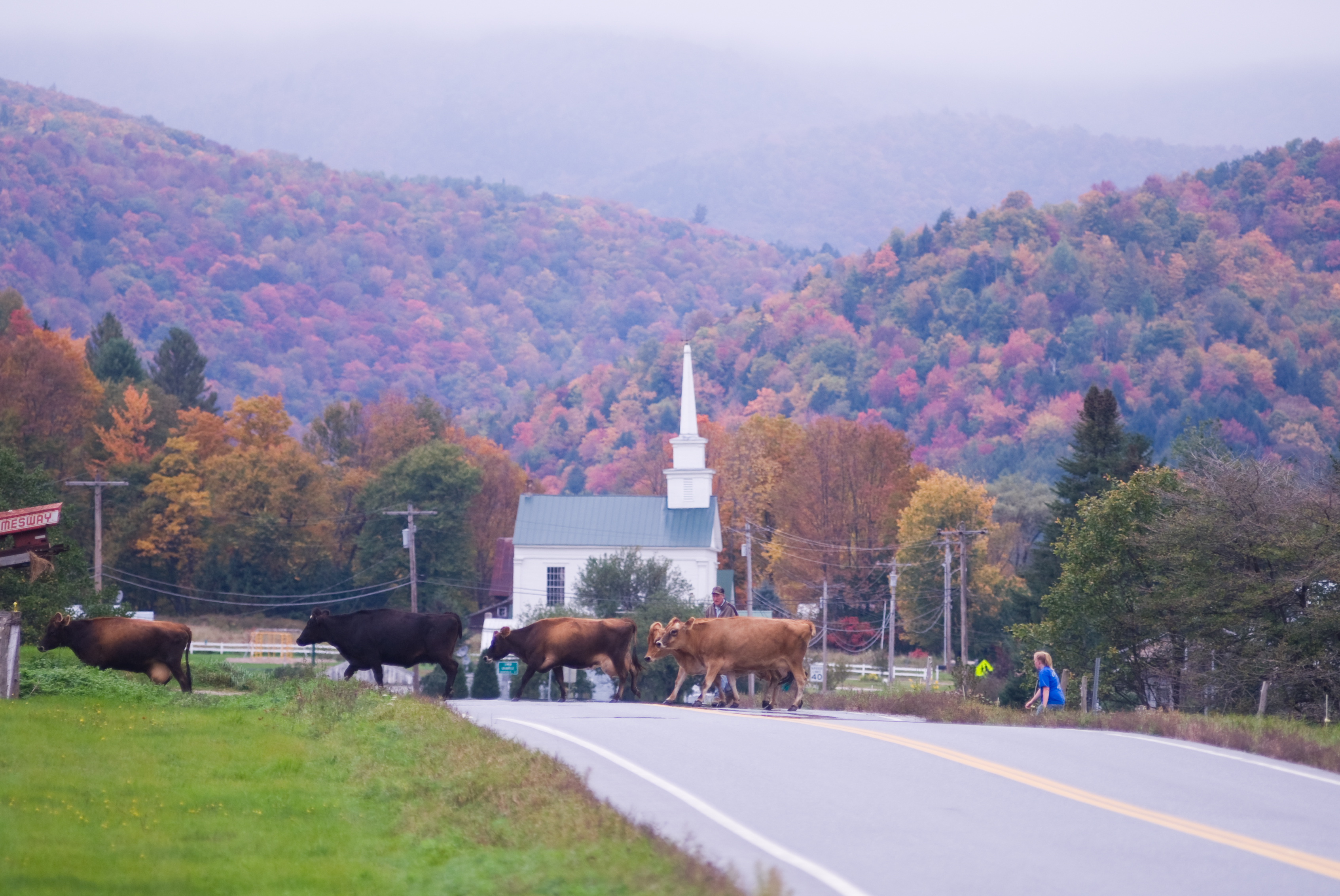 Vermont's Route 100   Fall Foliage Drive in Photos - New England Today
