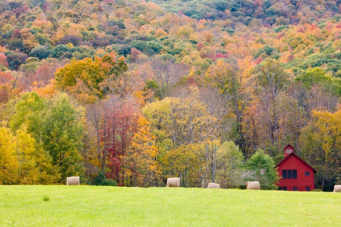 View from a hay field, Williamstown, Massachusetts