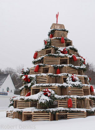 kennebunkport prelude tree in dock square lobster trap tree